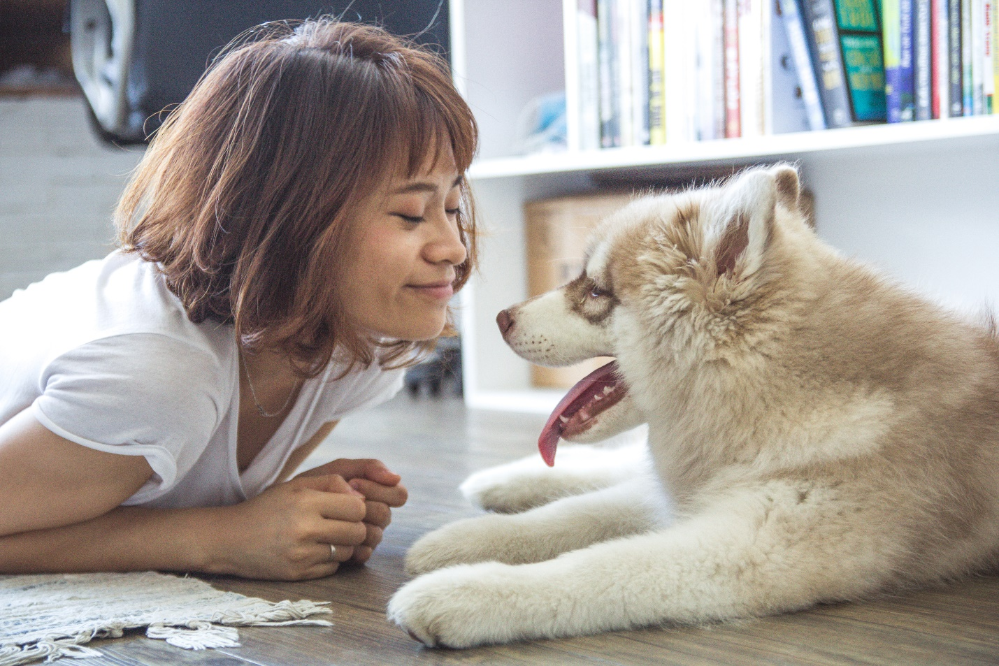 Unknown Facts About How Much Do Pet Sitters Make